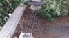 Toiture terrasse bitume avec feuilles à Montargis