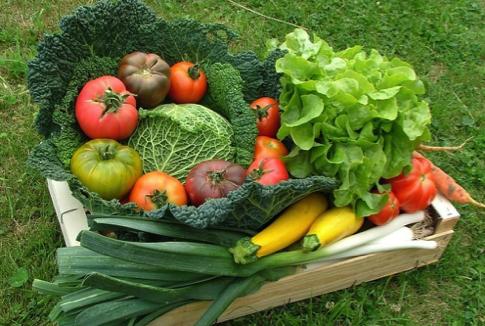 Comment consommer plus de légumes