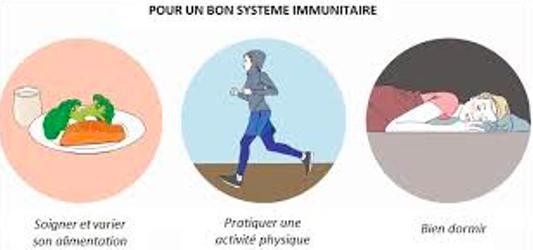 pour un bon systeme immunitaire