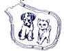 Adopter un chat dans le 94 - Association Saint-Maurienne des Amis des Animaux