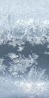 Clima freeze, Froid industriel à Paris 17