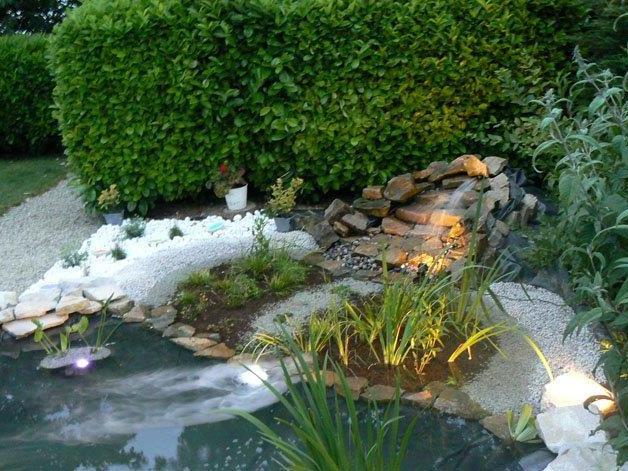 bassin.jpeg