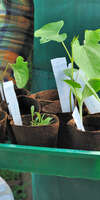 Ent fays , Entretien d'espaces verts à Heyrieux