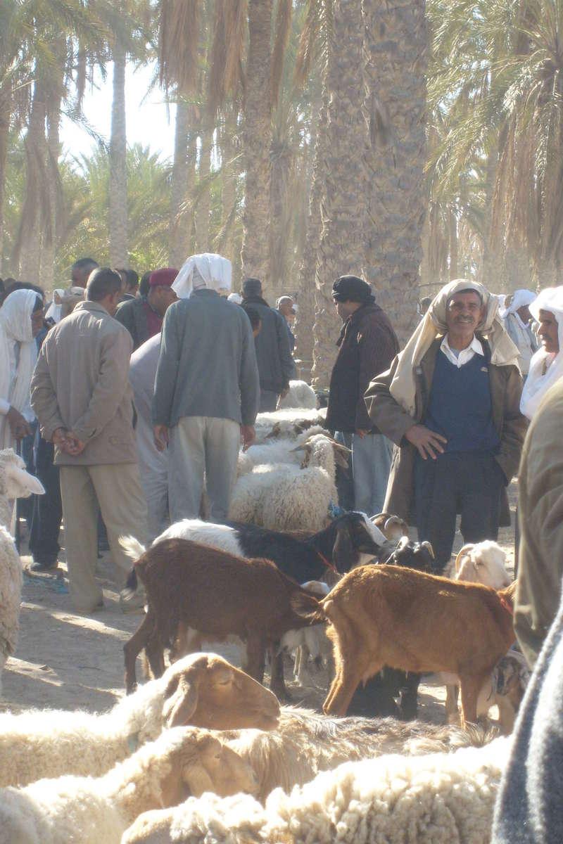 tunisie_sud