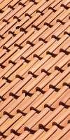 Ets Hognon.M , Entretien / nettoyage de toiture à Auray