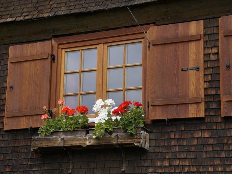 Fenêtres en bois paris