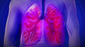 controle respiratoire