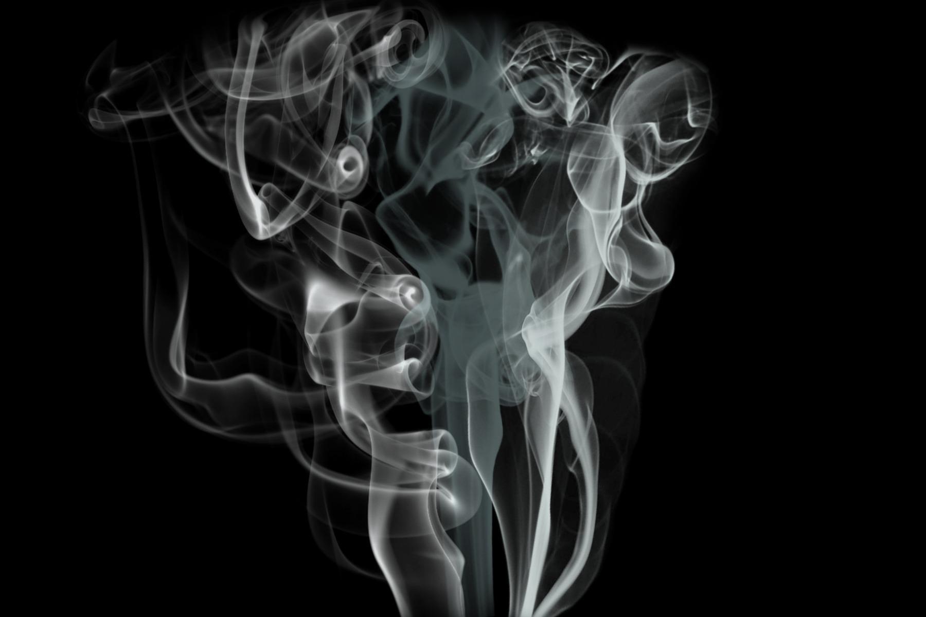 La vapeur pour éliminer les puces de parquet