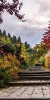 Mejan Gino, Création et aménagement de jardins à Meyzieu