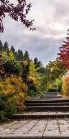 Mejan Gino, Création et aménagement de jardins à Sainte-Foy-lès-Lyon