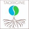 TAORIGINE Médecine Systémique Chinoise à Idron