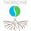 Taorigine constellation familiale et systémique