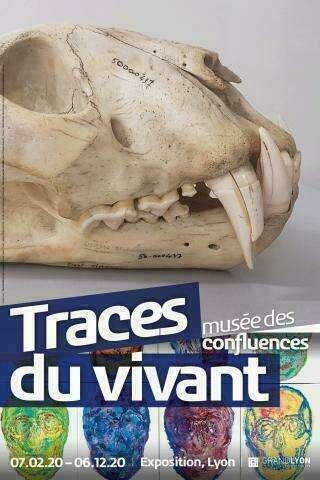 _traces_du_vivant_lyon