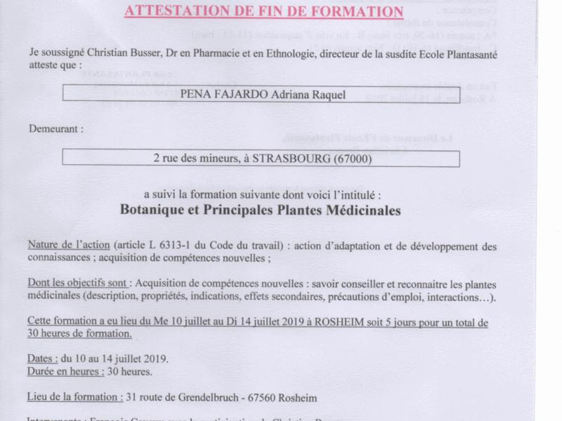 formation_botanique_et_principales_plantes_medicinales120200217-1862582-1dmrfjh