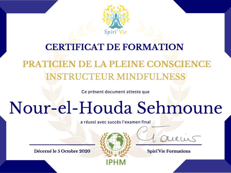mindfulness_certification