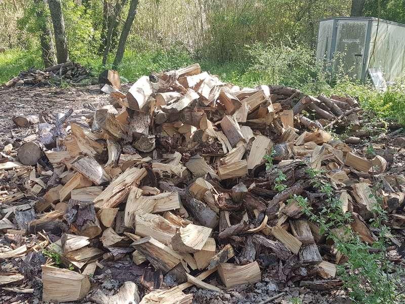 Bois de chauffage pin bien sec fendu et coupé en max 50cm