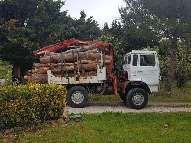 Camion grue mini grumier 4x4 7m3