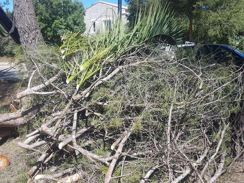 Enlèvement déchets verts particulier à Ventabren