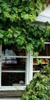 MOREAU FABRIMETAL , Installation de fermetures à Melle