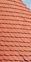 CASA Projects, Entretien / nettoyage de toiture à Loos