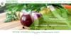 Faire un site web de dieteticien pas cher