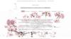 image site internet psychomotricienne flore david