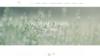 image site internet artisan joaillier kerhael