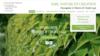 image site web artisan paysagiste sarl nature et creation