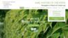 Image site web jardinier paysagiste Nature et création par Simplébo