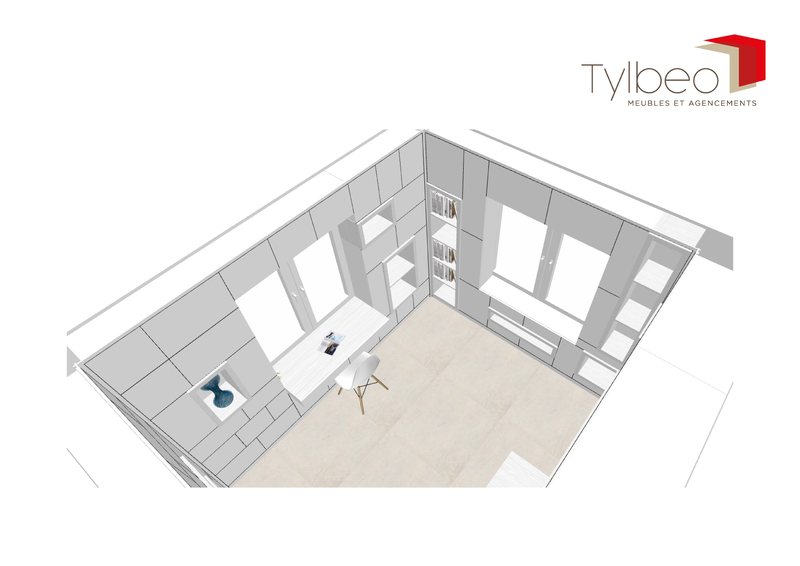 tylbeo_-_projet_trarieux_-_plan_3d_bureau3