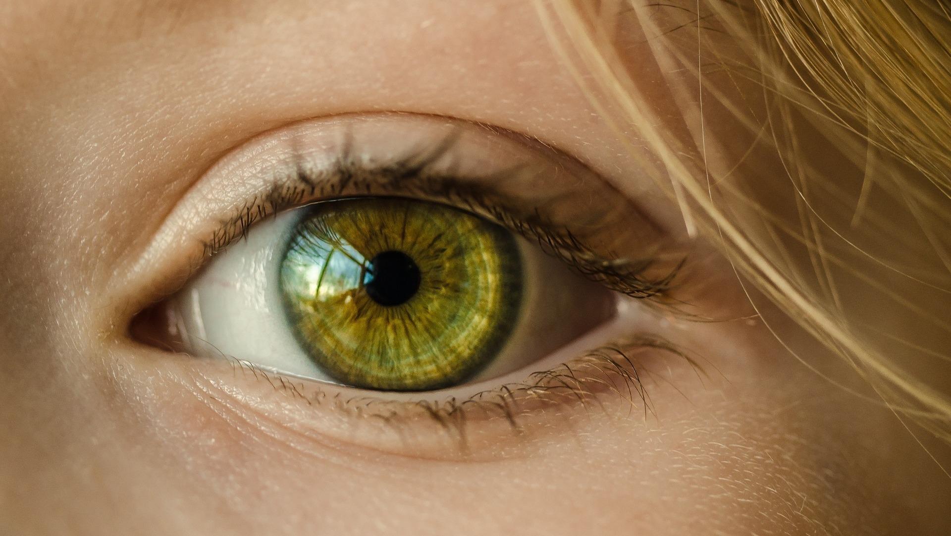 la seance avec votre naturopathe didier dinov iridologie