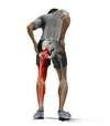 douleur-sciatique-hernie-discale-osteopathe-a-versailles-78